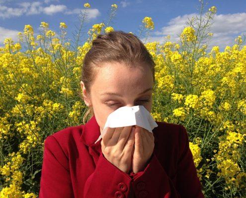 Office Allergies